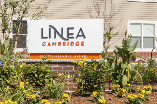 Linea Cambridge, MA  216197-010, Nordblom Company (property manager)
